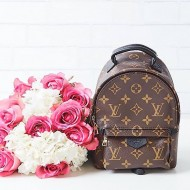 Мини раничка Louis Vuitton